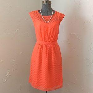 J.Crew Neon Coral Chevron Pattern Lined Mesh Dress